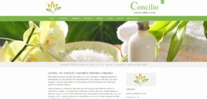 Concilio_Website_neu
